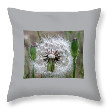 Slight Breeze Throw Pillow