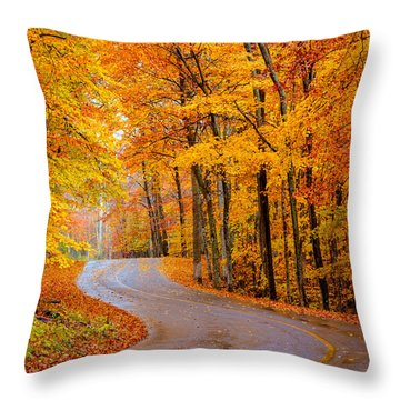 Slippery Color Throw Pillow