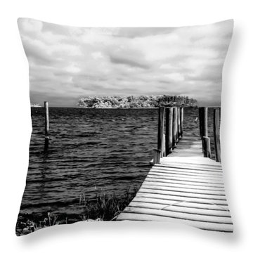 Slippery Dock Throw Pillow