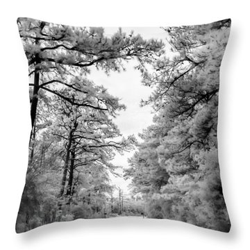 Slippery When Frozen Throw Pillow