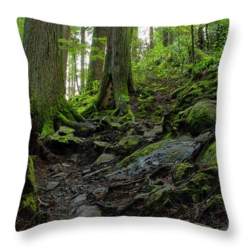 Throw Pillow featuring the photograph Slippery When Wet by Sharon Talson