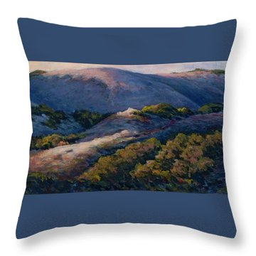 Slipping Into Night Throw Pillow