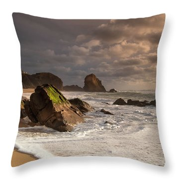 Slipping On Sand Throw Pillow by Edgar Laureano