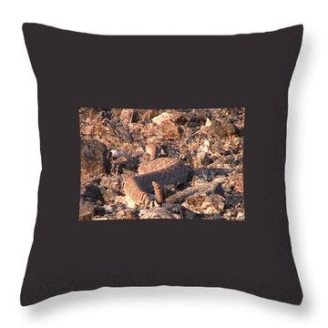 Slithering Away With Tail Held High Throw Pillow