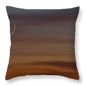 Throw Pillow featuring the photograph Sliver by Carl Young