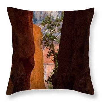Sliver Of Bryce Throw Pillow