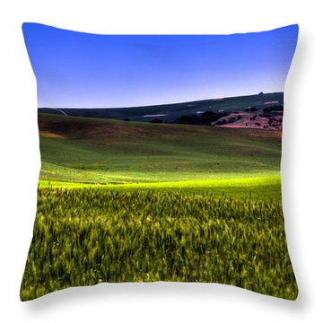 Sliver Of Sunlight On The Palouse Hills Throw Pillow by David Patterson