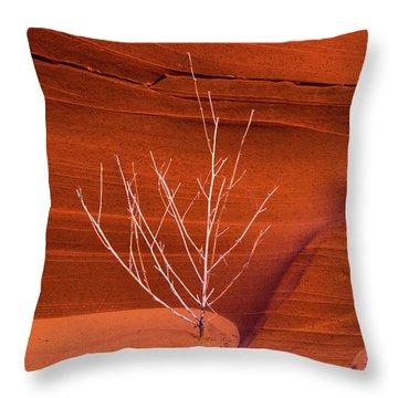 Slot Canyon Sentinel Throw Pillow