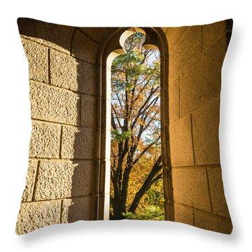 Slot Window Throw Pillow