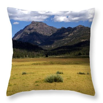 Slough Cree Vista Throw Pillow by Marty Koch