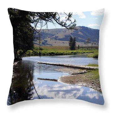 Slough Creek 1 Throw Pillow by Marty Koch