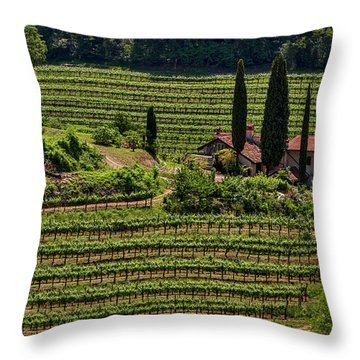Throw Pillow featuring the photograph Slovenian Vineyard by Stuart Litoff