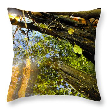 Slow Creek Throw Pillow