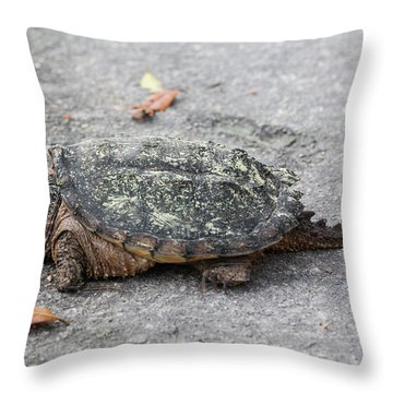 Slow Crossing 3 March 2018 Throw Pillow