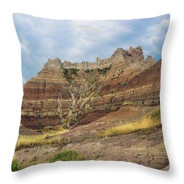 Slow Erosion Throw Pillow