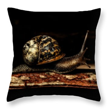 Slow Mover Throw Pillow
