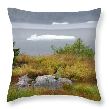 Slowly Floating By Throw Pillow