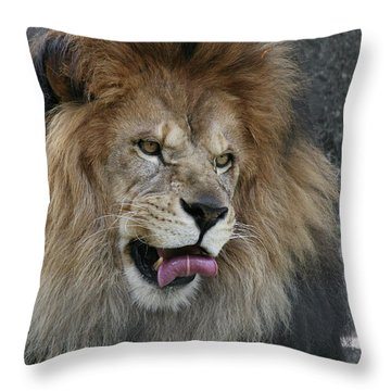 Slurp #2 Throw Pillow