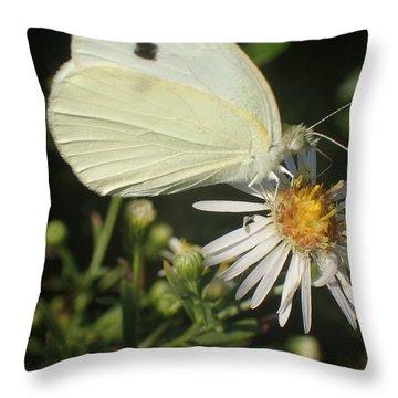 Sm Butterfly Rest Stop Throw Pillow