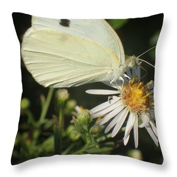 Sm Butterfly Rest Stop Throw Pillow