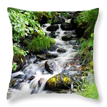 Small Alaskan Waterfall Throw Pillow