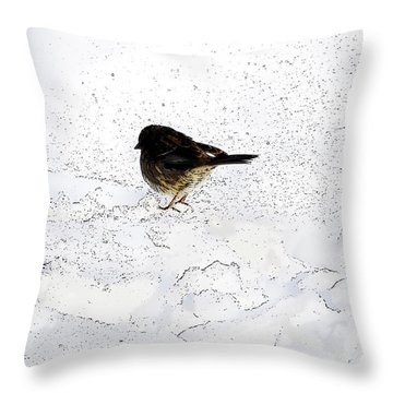 Small Bird On Snow Throw Pillow by Craig Walters