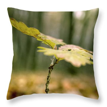 Small Branch With Yellow Leafs Close-up Throw Pillow