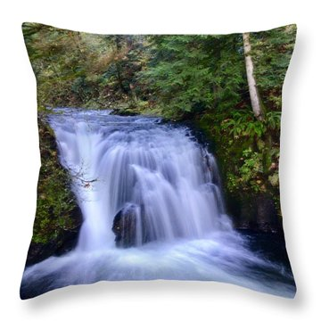 Small Cascade Throw Pillow