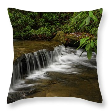 Small Cascade On Pounder Branch. Throw Pillow by Ulrich Burkhalter