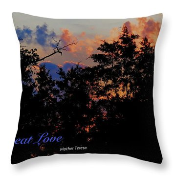 Small Counts Throw Pillow by David Norman