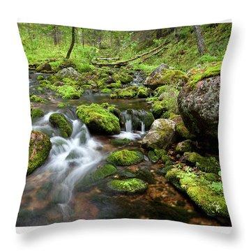 Small Creek On Velhopolku Trail Throw Pillow