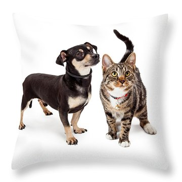 Small Dog And Cat Looking Up Together Throw Pillow by Susan Schmitz