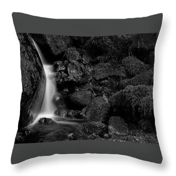 Small Fall Throw Pillow