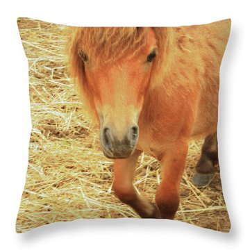 Small Horse Large Beauty Throw Pillow by Karol Livote