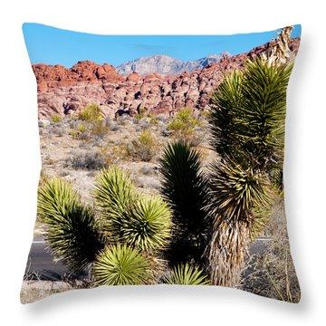 Small Joshua Tree Throw Pillow by Rae Tucker