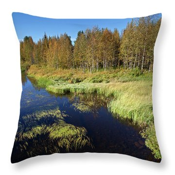 Small Lake In Levi Throw Pillow