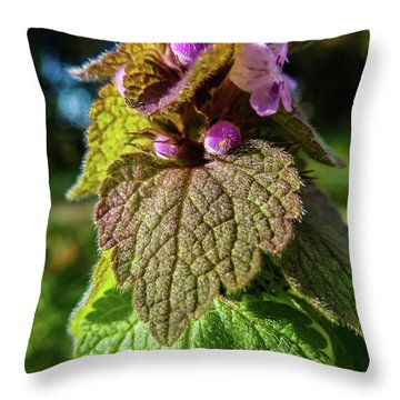 Small Mauve Flowers 7 Throw Pillow by Jean Bernard Roussilhe