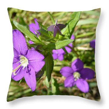 Throw Pillow featuring the photograph Small Mauve Flowers by Jean Bernard Roussilhe