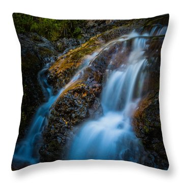 Small Mountain Stream Falls Throw Pillow by Chris McKenna