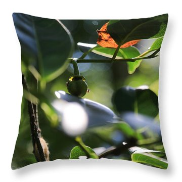 Small Nature's Beauty Throw Pillow by Christopher L Thomley