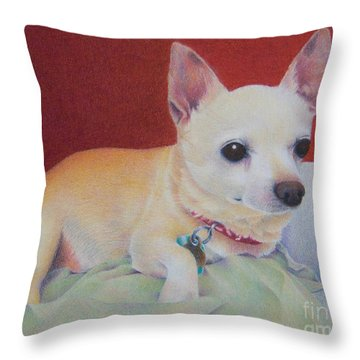 Small Package Throw Pillow