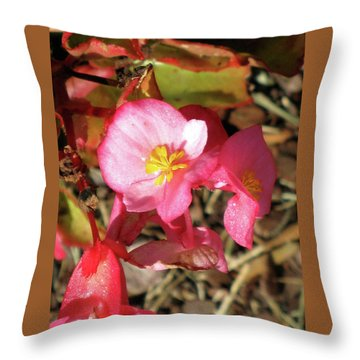 Small Pink Flowers Of Summer Throw Pillow by Michele Wilson