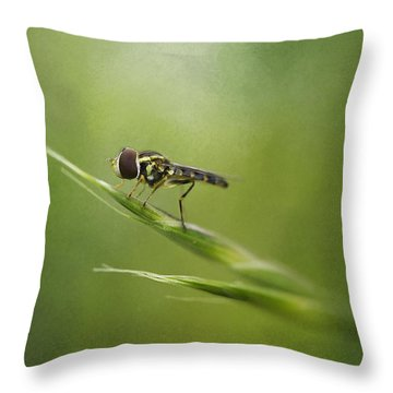 Small Significance Throw Pillow
