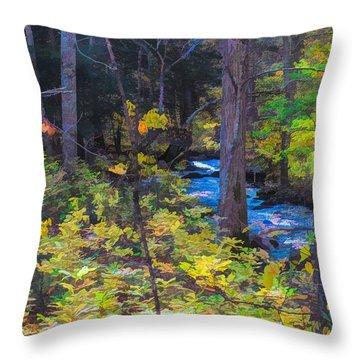 Small Stream Through Autumn Woods Throw Pillow