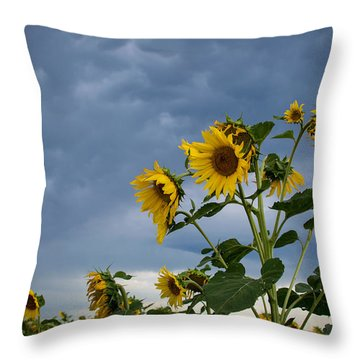 Small Sunflowers Throw Pillow