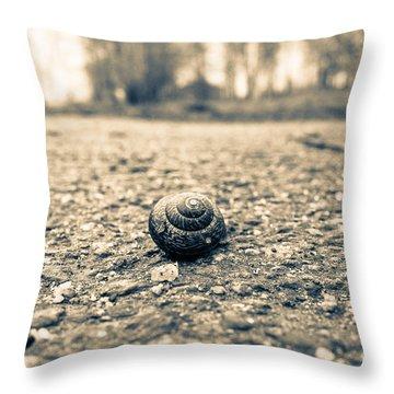Small Traveler Throw Pillow
