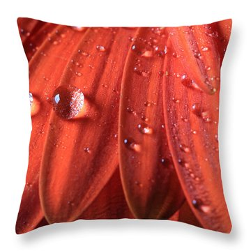 Small Water Drops Throw Pillow