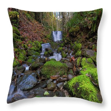 Small Waterfall At Lower Lewis River Falls Throw Pillow by David Gn
