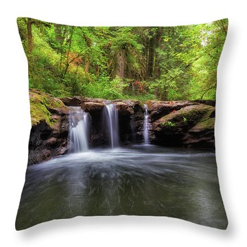 Small Waterfall At Rock Creek Throw Pillow by David Gn