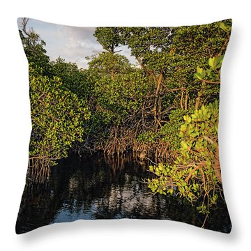 Small Waterway In Vitolo Preserve, Hutchinson Isl  -29151 Throw Pillow